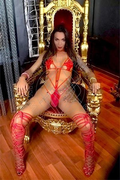 Sasha Gaucha CINISELLO BALSAMO 3207237696